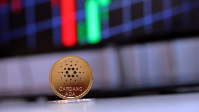 "Photo of ""I despise price analysis"" – Cardano CEO rejects crash scenario"